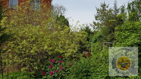 Элитный частный дом с Ландшафтным дизайном двора - Фото 4