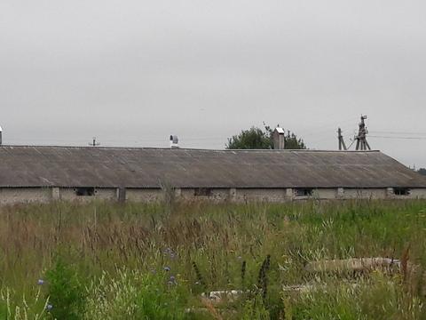 Комплекс-ферма в с.Ефимьево городского округа Переславль-Залесский - Фото 5