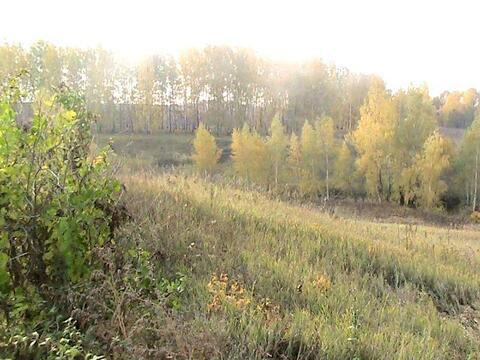 Продам участок на берегу озера в Жуково - Фото 4