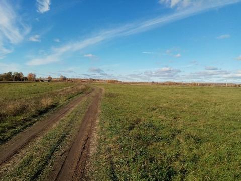 Участок 60 сот ЛПХ в селе Симоново, Заокского р-н - Фото 3