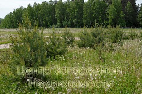 Участок, Симферопольское ш, Варшавское ш, 100 км от МКАД, Серпухов. . - Фото 3