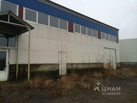 Производственное помещение в Владимирская область, Петушки ул. . - Фото 2