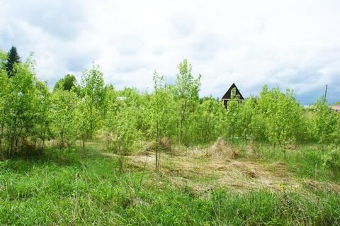 15 соток в деревне Васильевское Волоколамского р-на. 125 км. от МКАД. - Фото 5