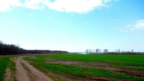 Продажа: участок 4000 соток, село Чувашский Сускан - Фото 4