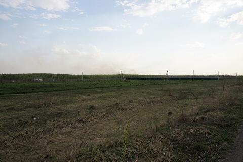 Земельный участок площадью 19 сот. - Фото 5
