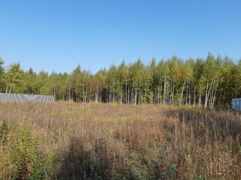 Большое Петровское д, участок 15 соток, знп для ИЖС, свет подведен. - Фото 2