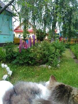 Продам дом с удобствами в д. Дворищи Маловишерского р-на - Фото 4