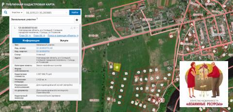 Продам два участка по 24 сотки в черте г. Сольцы Новгородской области - Фото 2