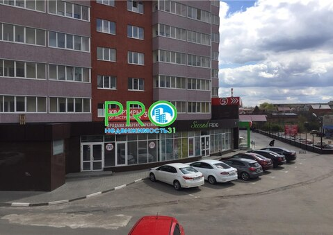 Объявление №48228391: Помещение в аренду. Белгород, ул. Губкина, 17И,