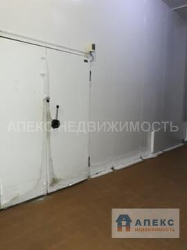 Аренда помещения пл. 530 м2 под склад, холодильный склад Быково . - Фото 4