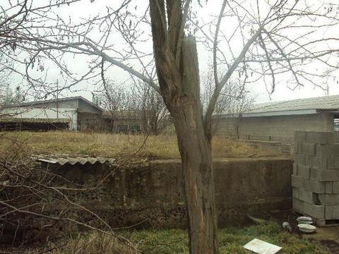 Продажа готового бизнеса, Голубицкая, Темрюкский район - Фото 3