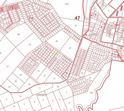 Продажа участка, Низино, Ломоносовский район - Фото 2