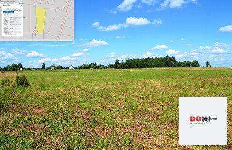 Продажа земли сельскохозяйственного назначения в Егорьевском р-не - Фото 3