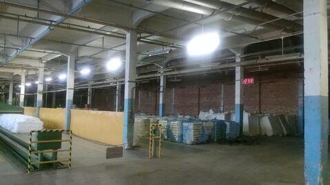 Сдам производственно-складской цех 12 000 кв.м. - Фото 2