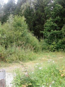 Дача 15 кв. м. в сосновом лесу рядом с г. Балабаново - Фото 3