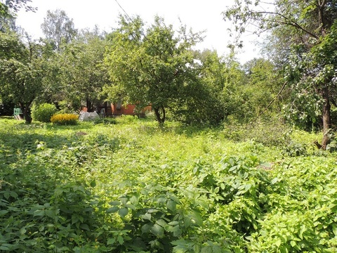 Продам земельный участок 7 соток в г.Мытищи, поселок Дружба - Фото 3