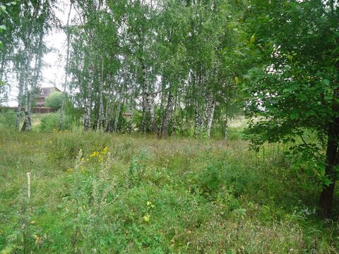 Земельный участок 38 соток, д.Дубёнки, Богородский р-н - Фото 1