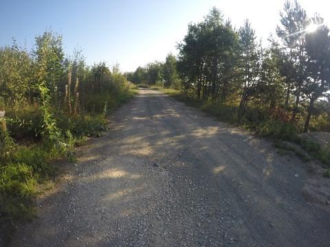 Земельный участок 15 сот. с электричеством в с. Кунгурка - Фото 1