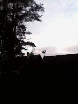 Продажа дачи, Керро, Всеволожский район, Керро дер. - Фото 4