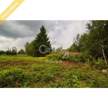Продажа земельного участка 22 сот в д. Пелдожа - Фото 1