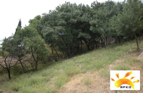 Продажа земельного участка 7 соток в Алупке с прекрасным видом на море - Фото 4