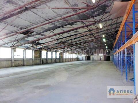 Аренда помещения пл. 1600 м2 под производство, склад Солнечногорск . - Фото 1