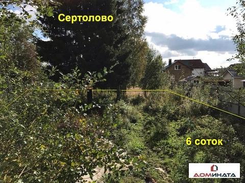 "Участок 6 соток в Сертолово, СНТ ""Ромашка"" - Фото 1"