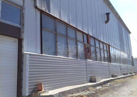 Сдам производственное помещение, Аренда склада в Тюмени, ID объекта - 900492341 - Фото 1
