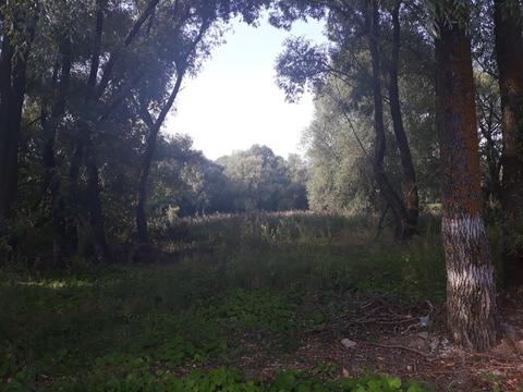 Продаю земельный участок в черте города - Фото 4