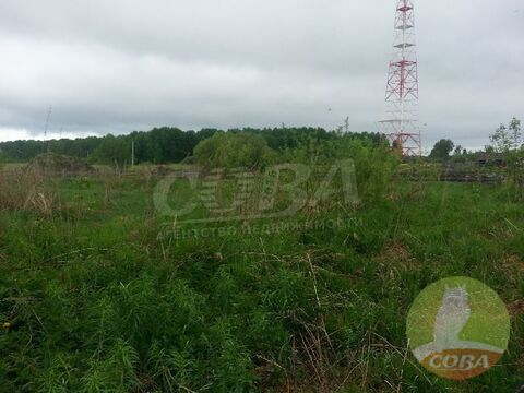 Продажа участка, Липчинское, Слободо-Туринский район - Фото 2