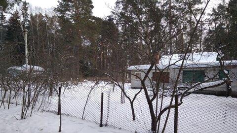1/2 дома на небольшом клочке земли в окружении столетних сосен, в крас - Фото 2
