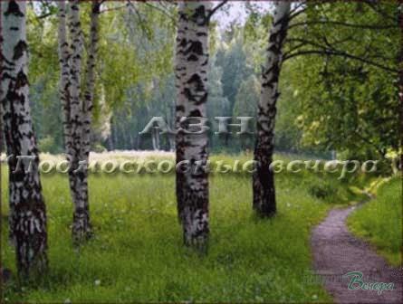 Новорижское ш. 10 км от МКАД, Михалково, Таунхаус 315 кв. м - Фото 3