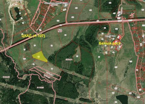 Земельный участок 3,8 Га 36 км от МКАД в село Белый Раст - Фото 1