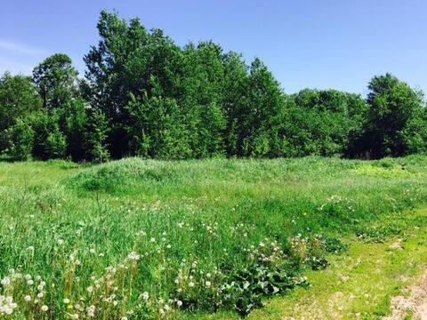 Недорого земельный участок 15 соток в тихой деревне Муравьево, Титово - Фото 1