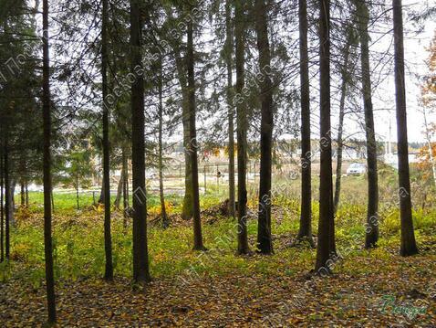 Ярославское ш. 20 км от МКАД, Нагорное, Участок 35 сот. - Фото 1