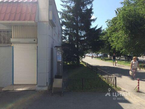 Аренда псн, Челябинск, Ул. Свободы - Фото 2