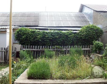 Продается часть дома с земельным участком, ул. Пушанина - Фото 3