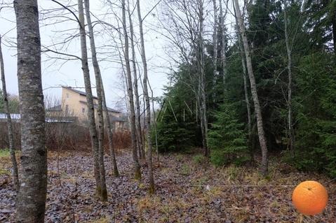 Продается участок, Новорижское шоссе, 37 км от МКАД - Фото 2