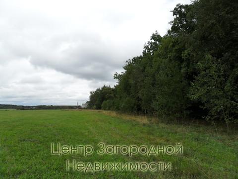 Участок, Ярославское ш, 35 км от МКАД, Цернское д, д.Цернское. . - Фото 3