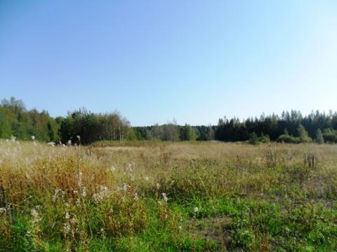 Участок 8 га на первой линии в Питкярантском р-н республики Карелия - Фото 1