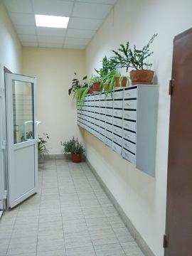 Приморский р-н спб, большая 1 комнатная квартира в кирпичном доме - Фото 2