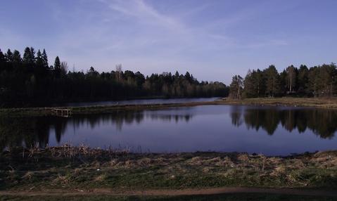 Земельный участок 35сот. Мельничий ручей, ИЖС, 20км. до грода - Фото 5