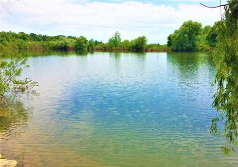 1400 соток с прямым выходом на пруд всего в 3 км. от горо - Фото 3
