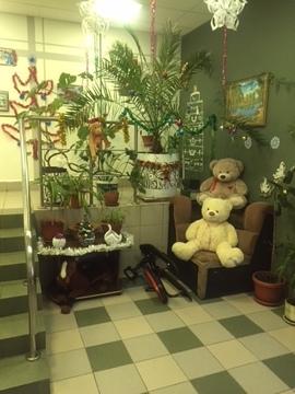 Сдам 2-х комнатную квартиру в Дрожжино - Фото 4