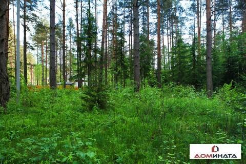 Прекрасный участок 40 соток в п. Кузьмоловский - Фото 3