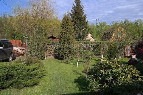 Ворсино. Труженик. Садовый дом с четырьмя спальнями и ландшафтным диза - Фото 5
