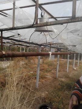 Сдаются длительно теплицы, пл. 330кв.м, стекло, район Дергачи - Фото 3