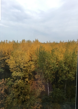 Продам 2к квартиру с видом на Щелковский хутор ул.Ванеева, 221 - Фото 1