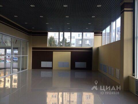 Аренда торгового помещения, Тамбов, Ул. Рылеева - Фото 2