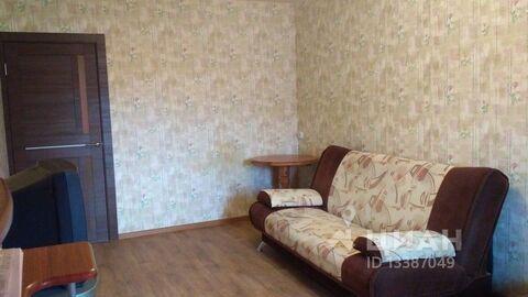 Аренда квартиры, м. Комендантский проспект, Ул. Гаккелевская - Фото 2